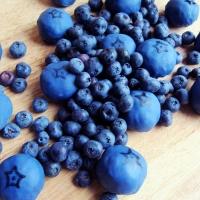 Blueberry Cake Balls