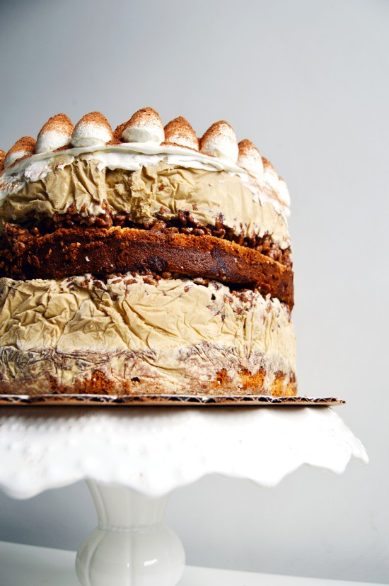 Tiramisu Ice Cream Cake 3