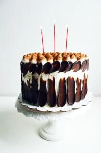 Tiramisu Crunch Ice Cream Cake 1