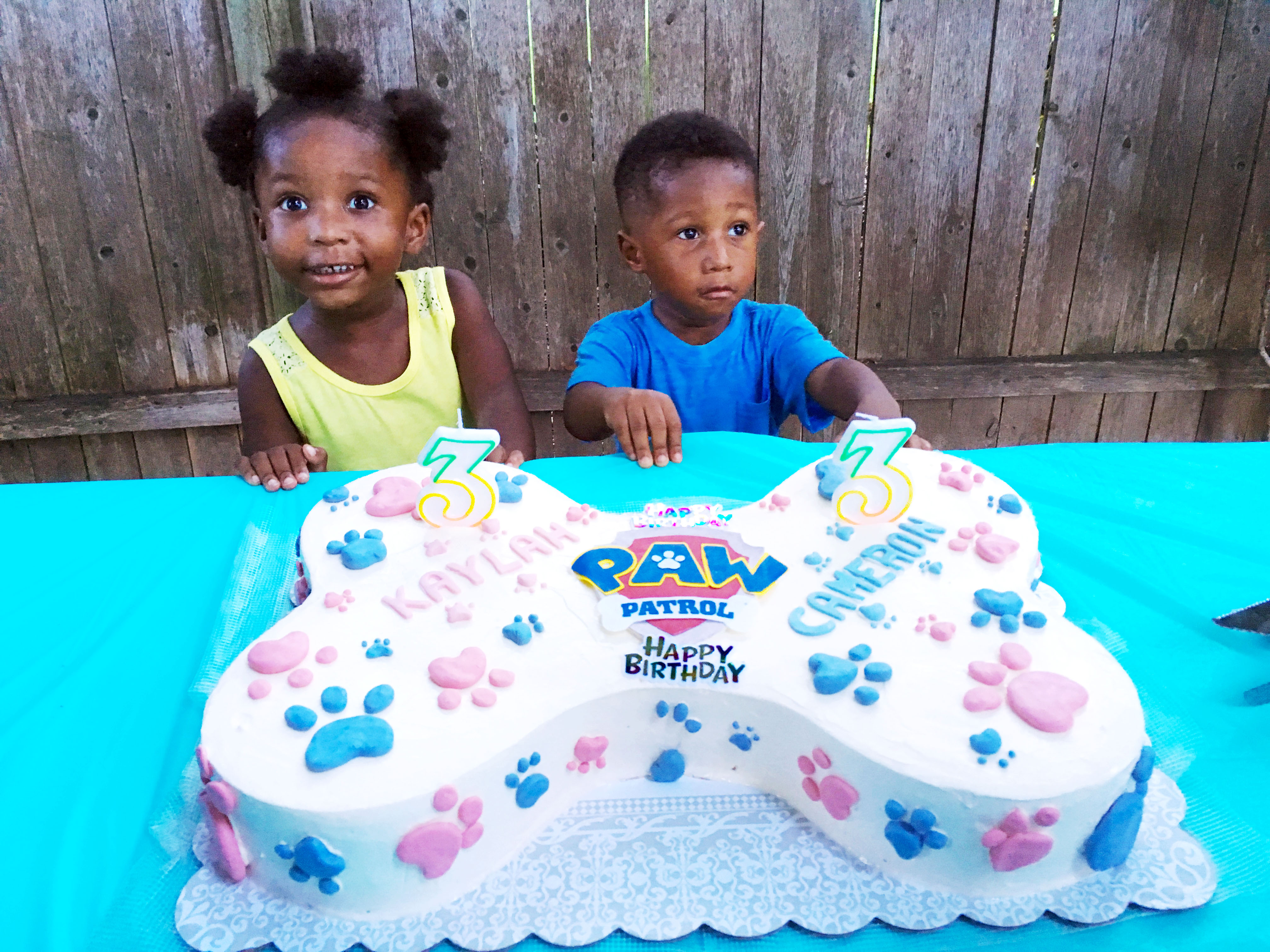 Paw Patrol Cake A How To Guide The Busy Spatula