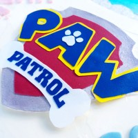 Paw Patrol Cake (A How-To Guide)